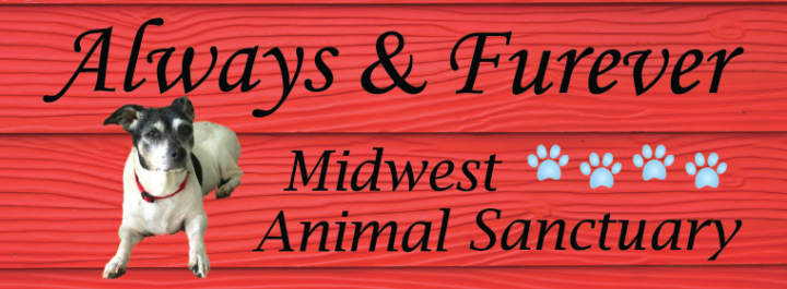 Always & Furever Midwest Animal Sanctuary